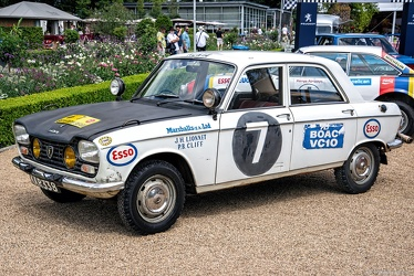 Peugeot 204 Safari Rally Group 1 1967 fl3q
